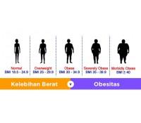 OBESITAS DAN PENYAKIT-PENYAKIT YANG AKAN DIDERITAN