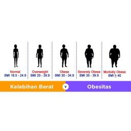 OBESITAS DAN PENYAKIT-PENYAKIT YANG AKAN DIDERITANYA.